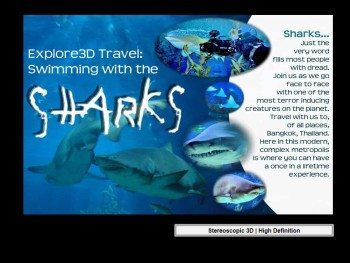 al-caudullo-productions-thailand-swimming-with-sharks-diving