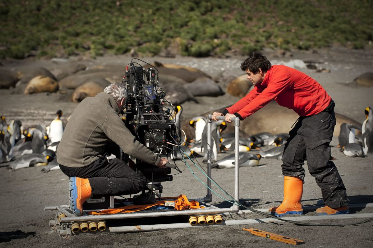 Penguins-3d-atlantic-productions